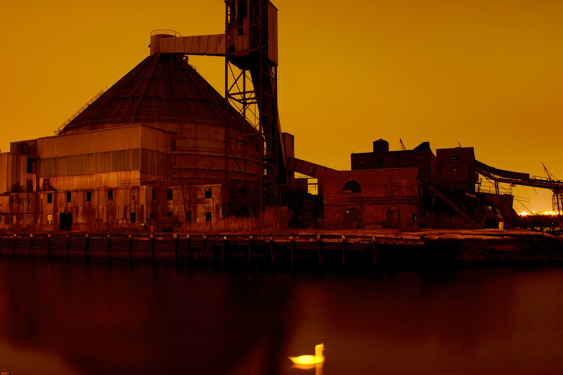 sugar-refinery-at-night-in red hook with a swan.jpg